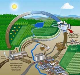 Podrška proizvodnji bioenergije