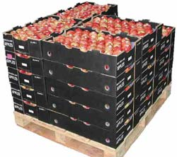 Pakovanje poljoprivrednih proizvoda