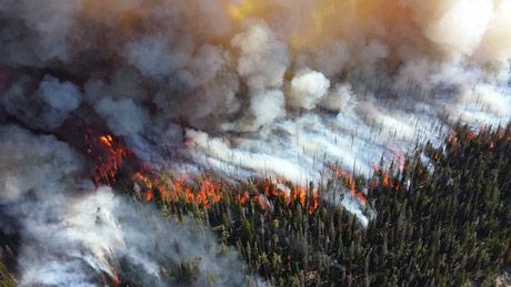 """Koliko će požari u Sibiru, Aljasci i Grenlandu """"koštati"""" planetu?"""