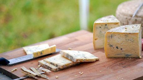 Kvalitetno mleko ključ uspeha vrhunskog sira