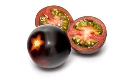 """""""Yoom"""" paradajz inovacija Fruit logistice 2020."""