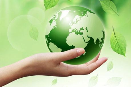 Povećavaju se površine pod organskom proizvodnjom u svetu