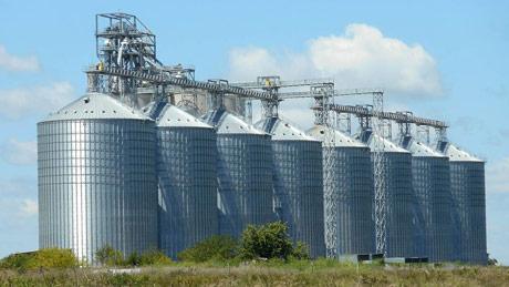 Opet problemi u razmeni kukuruza za junad