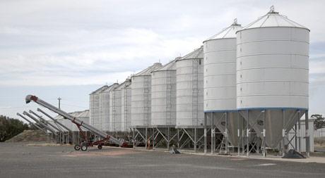 Rusija planira da smanji zavisnost od uvoznih komponenti stočne hrane