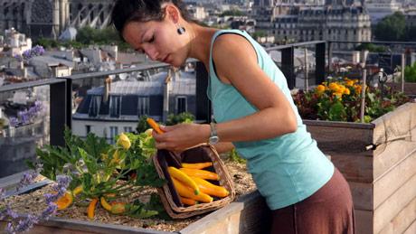 Belgijski start-up omogućava svima da postanu urbani farmeri