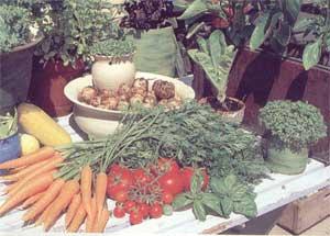 Svetsko organsko tržište stalno raste