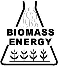 Energija u biomasi