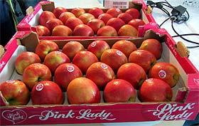 Pink Lady – dama među jabukama