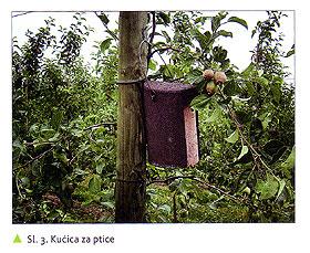 Zaštita jabuke u organskoj proizvodnji