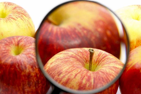 Kontrola dokumentacije ali ne i plodova voća i povrća
