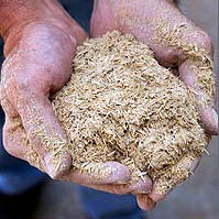 """Biomasa """"reže"""" troškove proizvodnje"""