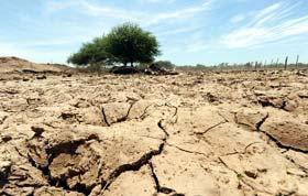 Borba za oranice (2) Sintetičko azotno đubrivo oštećuje zemljište