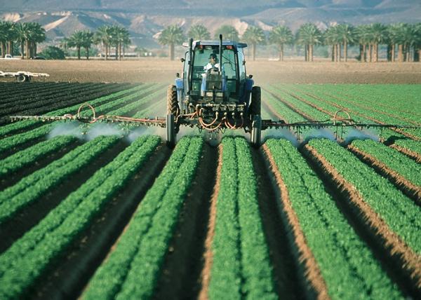Poslanici Evropskog parlamenta žele prirodnu alternativu pesticidima