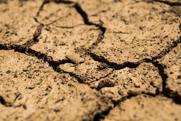 Degradacija zemljišta poljoprivredom poprimila strahovite razmere