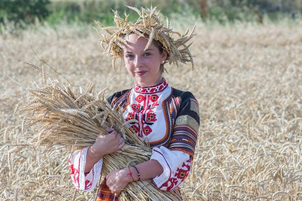 Koliko nam je pšenice, u stvari, potrebno?