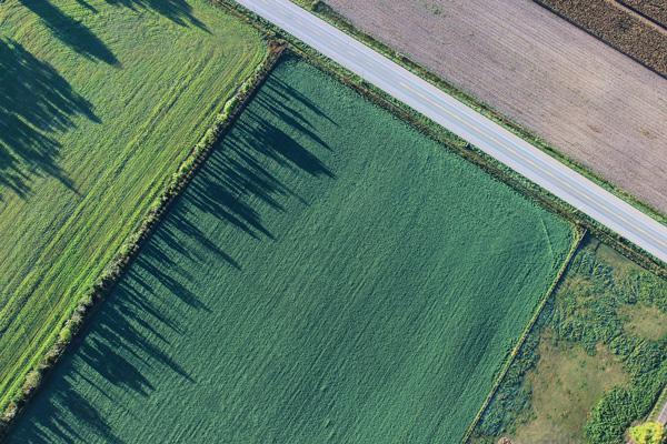 Zašto ne uredismo Zakon o zemljištu kao Poljaci?