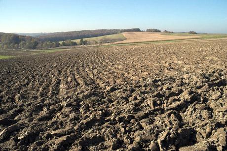Dopunska obrada zemljišta u jesen