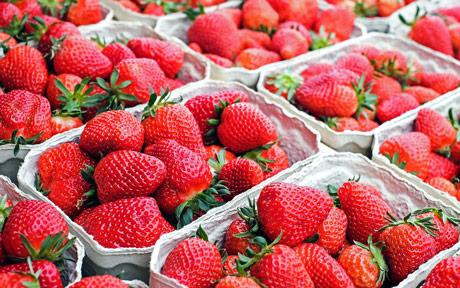 Ukrajina: Od uvoznika do izvoznika jagoda