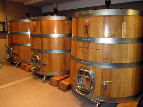 Uz enzime i selekcionisane kvasce do kvalitetnije rakije i vina