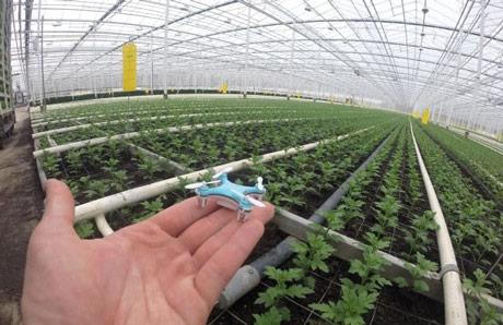 """""""Poremećena poljoprivreda"""" slogan FRUIT LOGISTICA Start-up dana"""