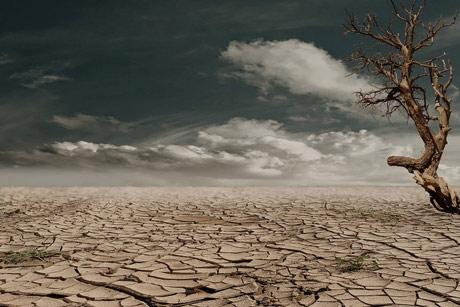Priroda nam nestaje pred očima!