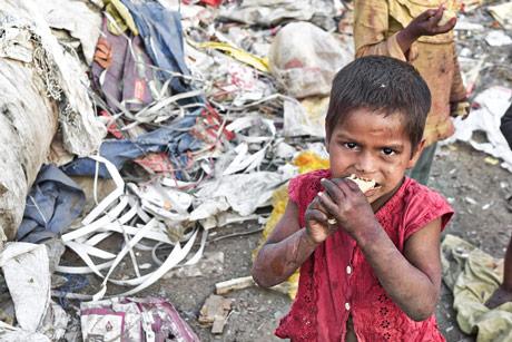 Trećina hrane u svetu se baci. Strašno!