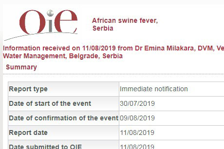 Pratite stanje sa afričkom kugom svinja u Srbiji
