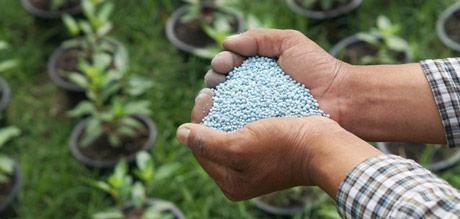 Iscrpljuju se nalazišta fosfata u svetu, poljoprivreda već u problemu