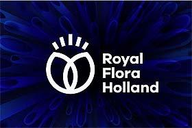 Novi izgled FloraHolland-a